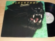 LP BLACKFOOT - Tomcattin´
