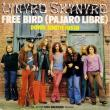 LYNYRD SKYNYRD - Free Bird / Down South Jukin´